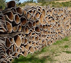 コルク積木素材